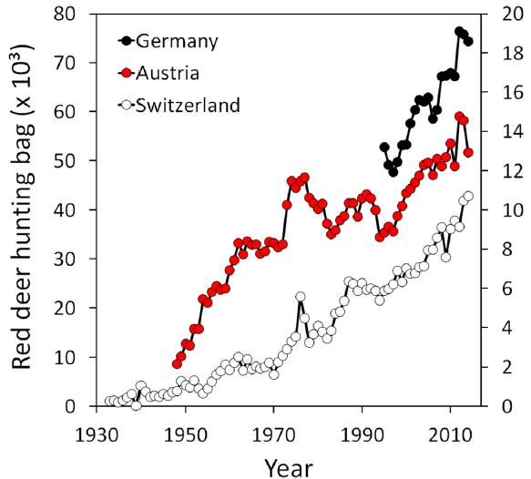 Entwicklung der Erlegungen von Rothirschen in Deutschland. Österreich und der Schweiz. Jagdstatistik von 1930 -2010