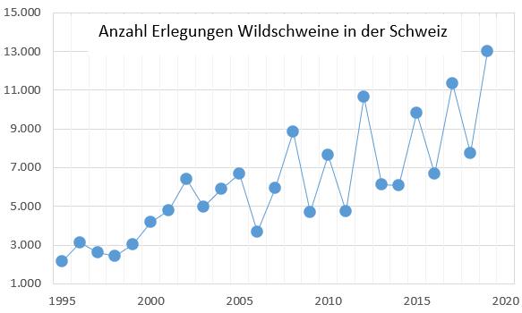 Entwicklung der Abschusszahlen von Wildschweinen in der Schweiz 1995 - 2020